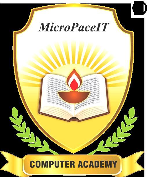 MicroPaceIT: Advanced Excel, SQL, VBA Macros, PMP